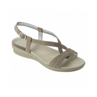 Scholl Lolland taupe