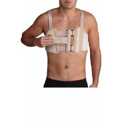 A szegycsont-öv illeszkedik a felső bordák köré, és stabilizálja a felső mellkas területét, valamint mellüreget. Csillapítja a fájdalmat és megkönnyíti a légzést törés vagy műtét után.